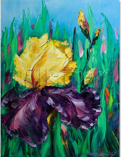 flower oil painting iris canvas wall art